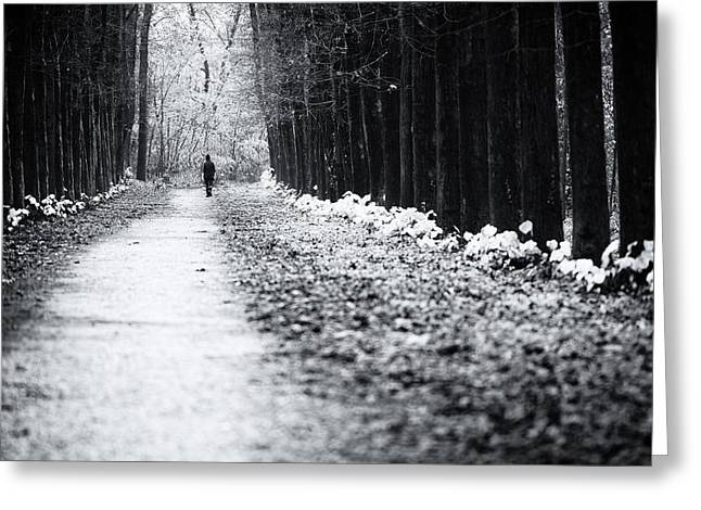 Dog Walking Greeting Cards - Walking on the moody lane Greeting Card by Alfio Finocchiaro