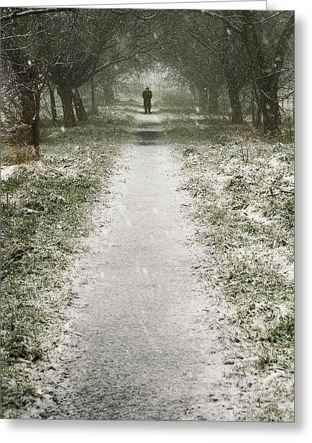 Snowy Roads Digital Art Greeting Cards - Walking on the winter path Greeting Card by Svetlana Sewell
