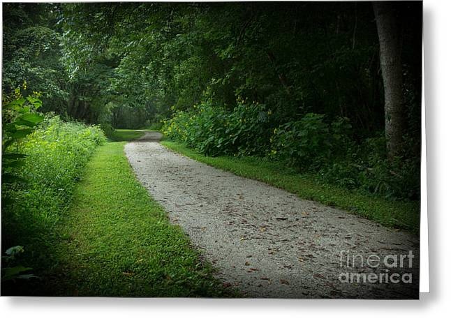 Jogging Greeting Cards - Walking Path Greeting Card by Douglas Stucky