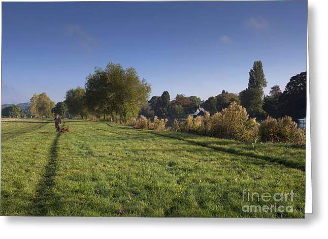 Dog Walking Greeting Cards - Walking the Dogs Greeting Card by Louise Heusinkveld