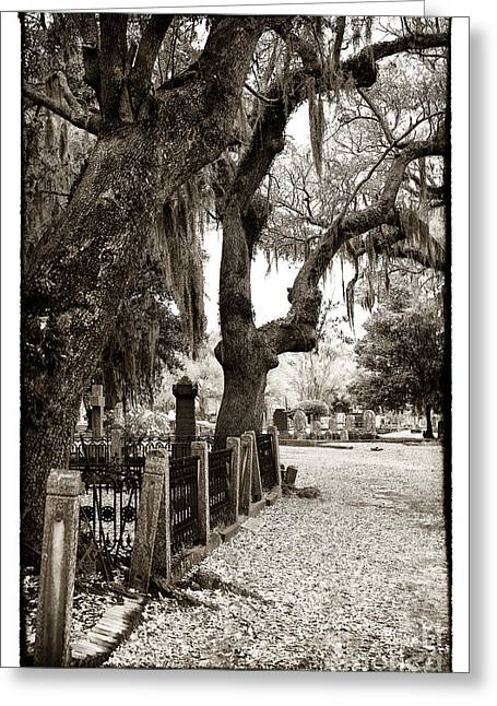 Historic Cemetery Greeting Cards - Walking the Line Greeting Card by John Rizzuto