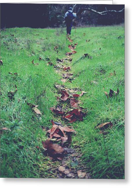 Fallen Leaves Greeting Cards - Walking the Path Less Traveled Greeting Card by Laurie Search
