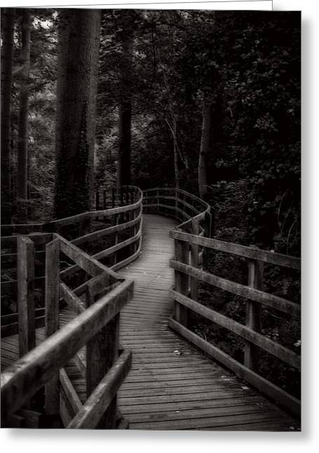 Garden Scene Digital Art Greeting Cards - Walking Trail In Wales Greeting Card by Michael Braham