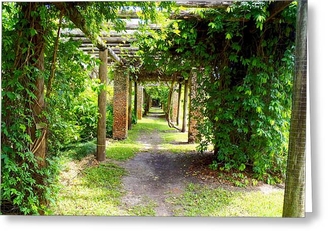 Gables Greeting Cards - Walkway Greeting Card by Carey Chen