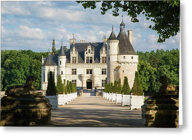 Walkway Leading To Chateau Chenonceau Greeting Card by Brian Jannsen