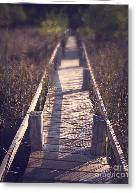 Bridge Greeting Cards Greeting Cards - Walkway Through The Reeds Appalachian trail Greeting Card by Edward Fielding