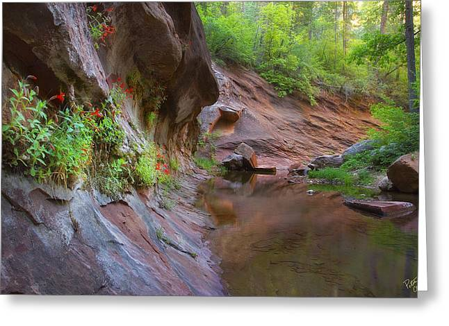 West Fork Greeting Cards - Wall Garden Greeting Card by Peter Coskun