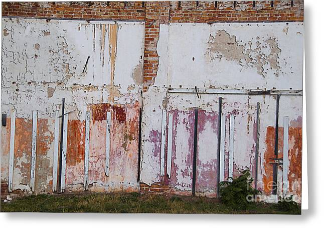 Outsider Photographs Greeting Cards - Wall of Colors Greeting Card by Terry Rowe