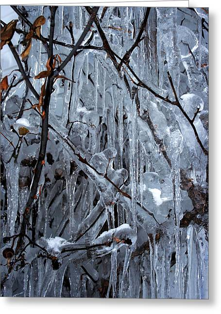 Dripping Rose Greeting Cards - Wall of Icicles Greeting Card by Ron Grafe