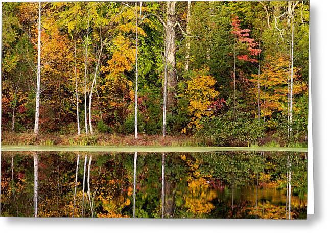Walnut Creek Lake Autumn Reflection Greeting Card by Nathaniel Kidd