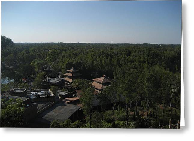 Disney Greeting Cards - Walt Disney World Resort - Animal Kingdom - 121211 Greeting Card by DC Photographer