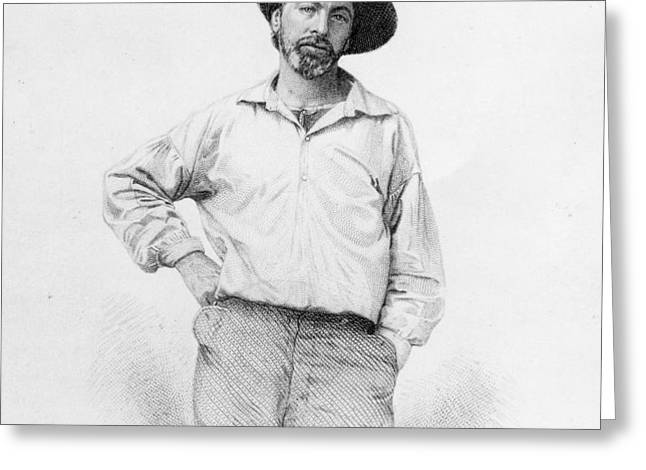 Walt Whitman frontispiece to Leaves of Grass Greeting Card by American School