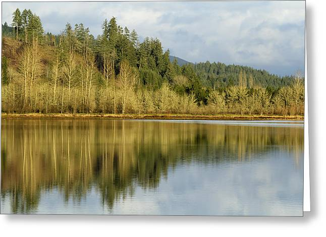 Branch Hill Pond Greeting Cards - Walterville Pond No. 1 Greeting Card by Belinda Greb