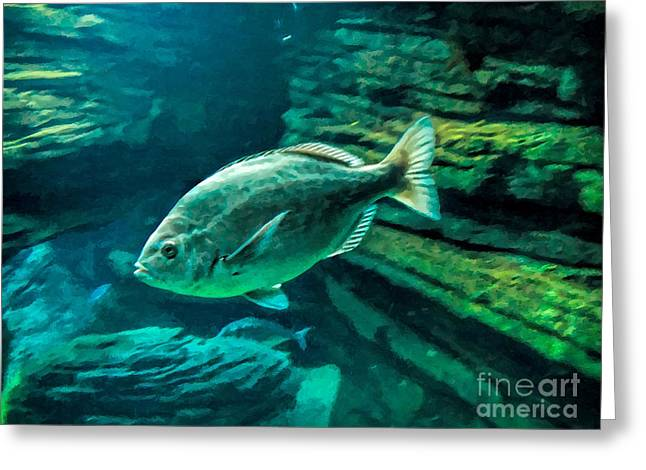 Fishscape Greeting Cards - Wandering Greeting Card by GabeZ Art