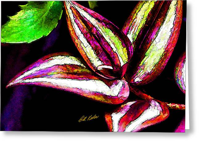 Bill Kesler Greeting Cards - Wandering Jew - Artistic Greeting Card by Bill Kesler