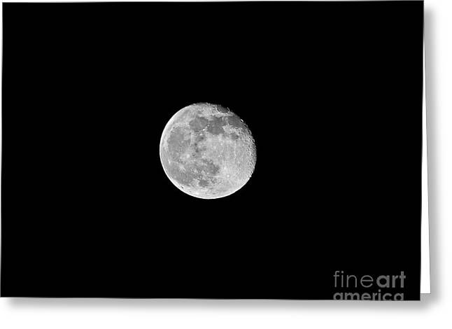 Luna Greeting Cards - Waning Flower Moon Greeting Card by Al Powell Photography USA