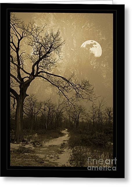Winter Scenes Rural Scenes Photographs Greeting Cards - Waning Winter Moon Greeting Card by John Stephens