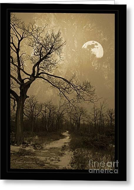 Winter Scenes Rural Scenes Greeting Cards - Waning Winter Moon Greeting Card by John Stephens