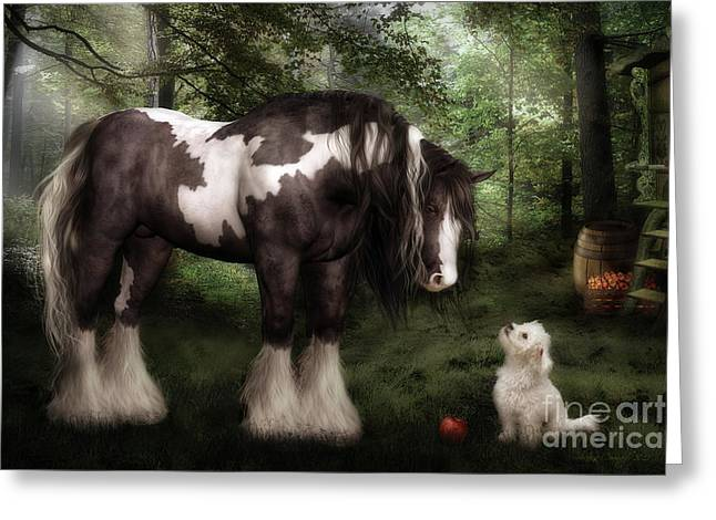 Gypsy Vanner Horse Greeting Cards - Want to Play Greeting Card by Shanina Conway