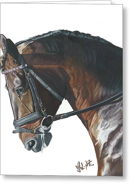 Dressage Drawings Greeting Cards - Wapanaug Greeting Card by Lindsay Zeltzer