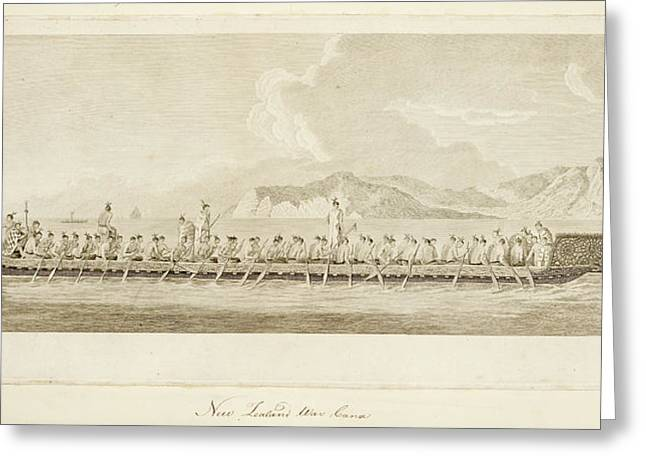 War Canoe Of New Zealand Greeting Card by British Library