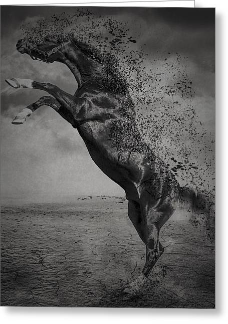 Debris Greeting Cards - War Horse Greeting Card by Erik Brede