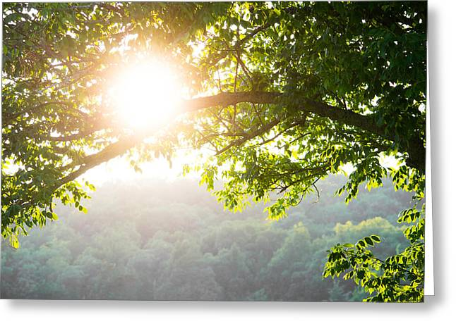 Overhang Greeting Cards - Warm Haze Greeting Card by Shelby  Young
