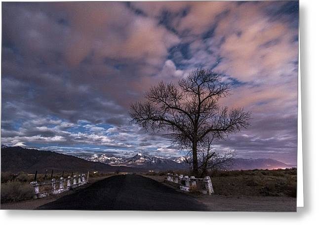 Pink Road Greeting Cards - Warm Springs Rd. Greeting Card by Cat Connor