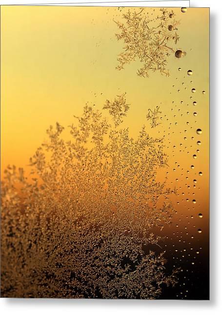 Warm Pyrography Greeting Cards - Warm Texture Greeting Card by Gennadiy Golovskoy
