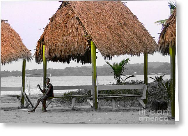Al Central Greeting Cards - Warmth And Protection In Bocas Del Toro - Panama Greeting Card by Al Bourassa