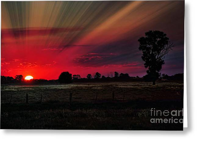 Warmth Of A Country Sunset Greeting Card by Kaye Menner