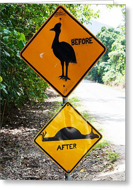 Warning Sign Greeting Cards - Warning Sign At The Roadside, Cape Greeting Card by Panoramic Images