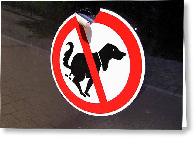 Warning To Dog Owners Greeting Card by Mark Williamson