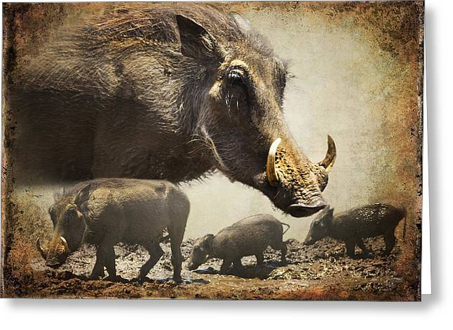 Warthog Profile Greeting Card by Ronel Broderick