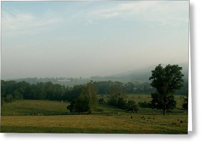 Pastureland Greeting Cards - Warwick Valley Greeting Card by Toni Ryder