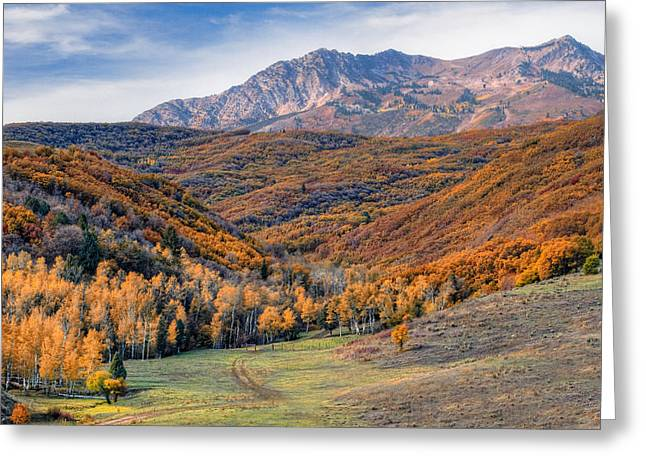 Strawberry Hill Greeting Cards - Wasatch Moutains Utah Greeting Card by Utah Images