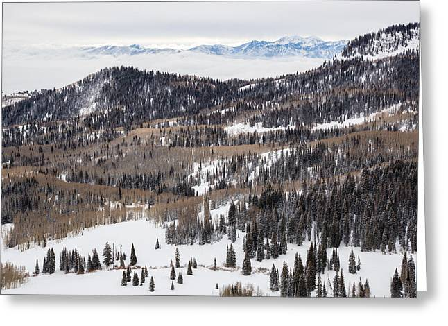 Inversion Greeting Cards - Wasatch Winter Greeting Card by Adam Pender