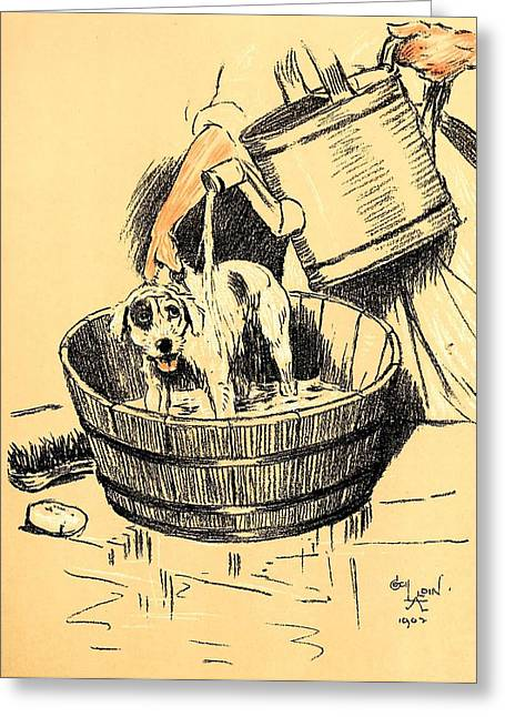 Aldin Greeting Cards - Washed By Mary - A Dog Day Collection 4 of 27 Greeting Card by Cecil Aldin