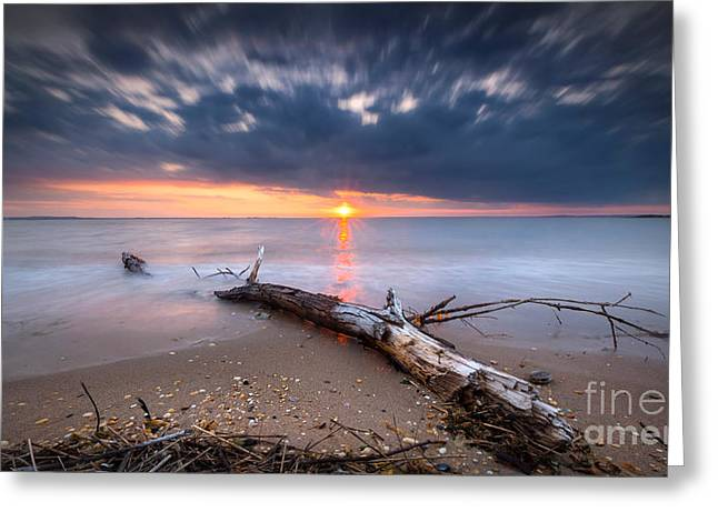 Drifter Photographs Greeting Cards - Washed Up  Greeting Card by Michael Ver Sprill