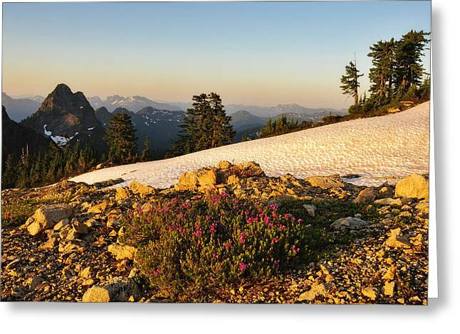 Washington, Cascade Mountains, Mount Greeting Card by Matt Freedman