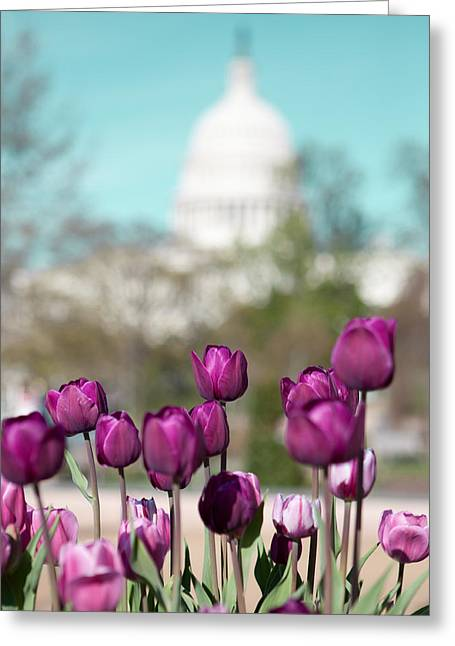 Washington Dc Greeting Card by Kim Fearheiley