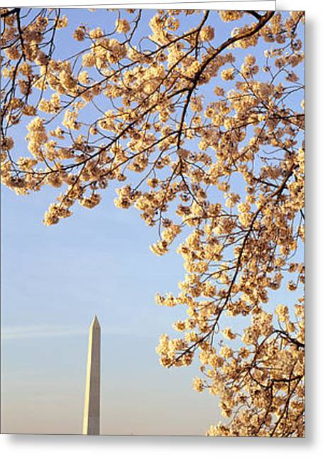 Flower Memorial Photography Greeting Cards - Washington Dc Usa Greeting Card by Panoramic Images
