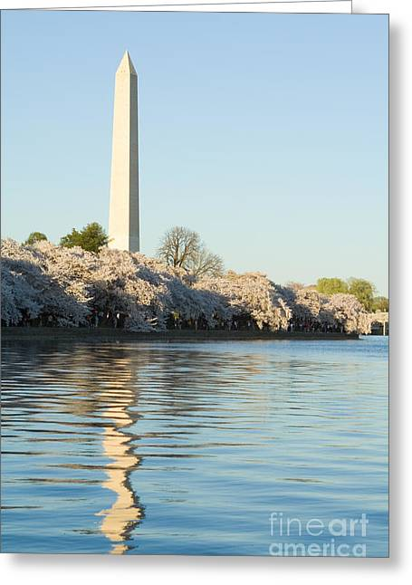 Tidal Photographs Greeting Cards - Washington Monument Cherry Blossoms  Greeting Card by Jim Pruitt