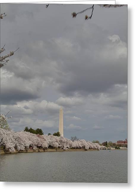 Zen Photographs Greeting Cards - Washington Monument - Cherry Blossoms - Washington DC - 011332 Greeting Card by DC Photographer
