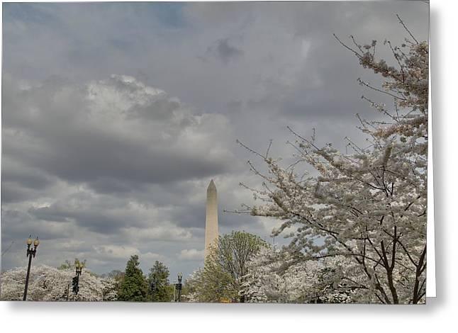 Urban Greeting Cards - Washington Monument - Cherry Blossoms - Washington DC - 011334 Greeting Card by DC Photographer
