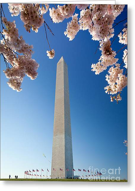 District Of Columbia Greeting Cards - Washington Monument Greeting Card by Inge Johnsson