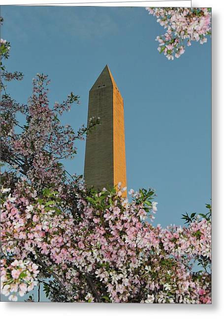 Washingtondc Greeting Cards - Washington Monument Greeting Card by Laurie Tracy