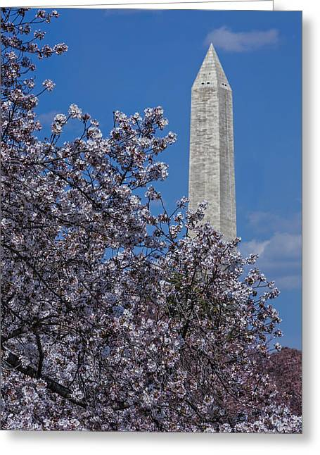 Capitol Flowers Greeting Cards - Washington Monument Greeting Card by Susan Candelario