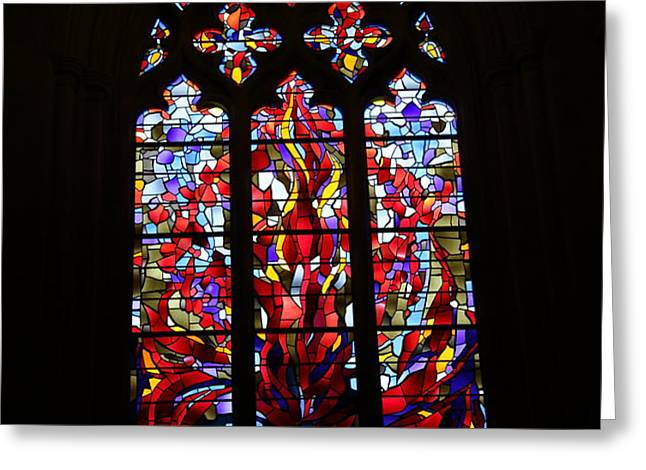 Washington National Cathedral - Washington DC - 011311 Greeting Card by DC Photographer