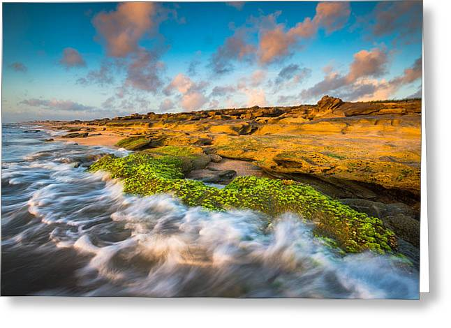 Florida State Parks Greeting Cards - Washington Oaks State Park Coquina Rocks Beach St. Augustine FL Beaches Greeting Card by Dave Allen